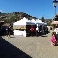 Turismo y Mercadillo de Tegueste