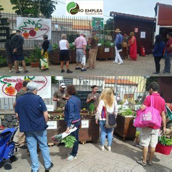 Agricultura ecológica en el Mercadillo de Tegueste