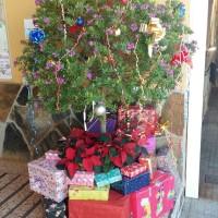 Ambiente y animación navideña en Mercadillo de Tegueste