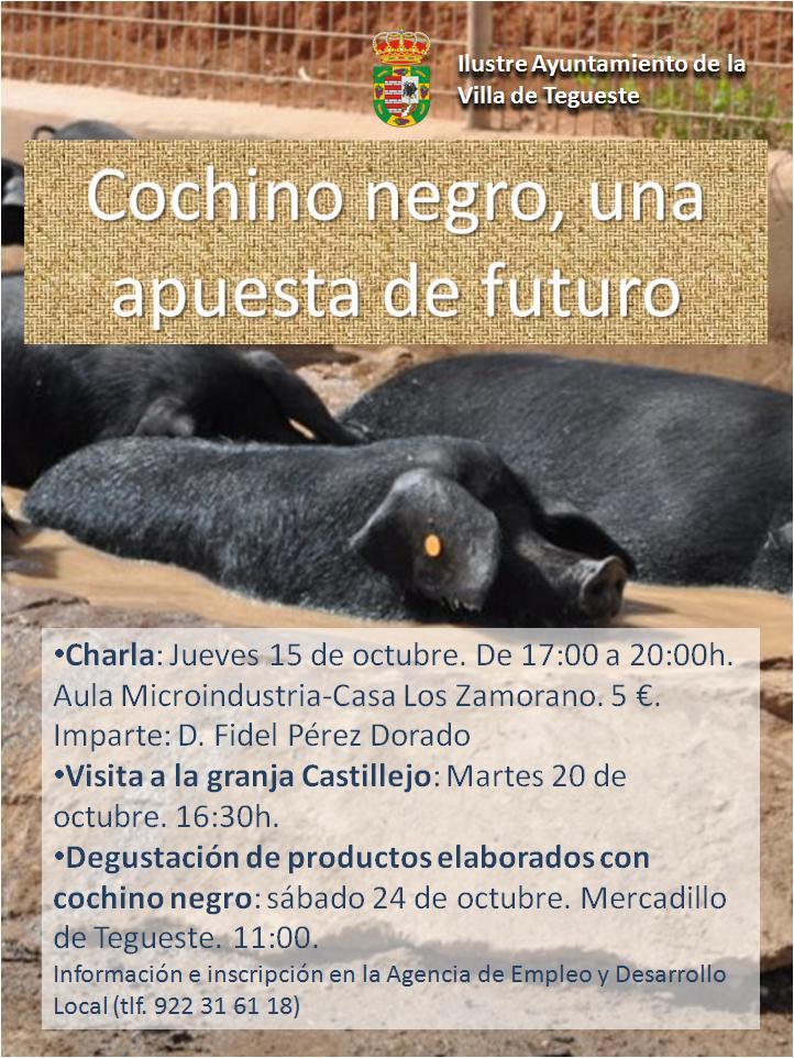Cochino negro canario en Mercadillo de Tegueste