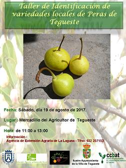 Conocer más de la pera en el Mercado del Agricultor de Tegueste