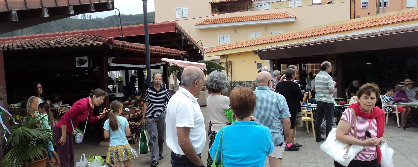 Desarrollo local y empleo en Tegueste