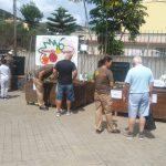 Huertos urbanos ecológicos en Mercadillo de Tegueste