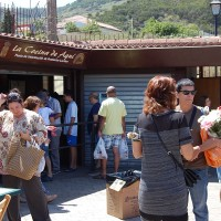 Promover el producto local la sandía en Tegueste