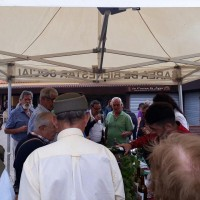 La uva sorprende en el Mercadillo de Tegueste