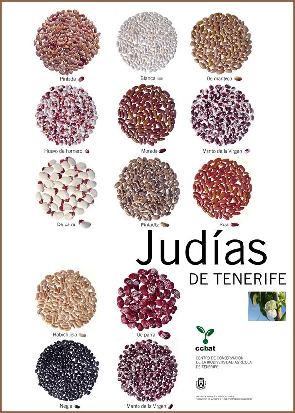 Nutritivas legumbres en el Mercadillo de Tegueste