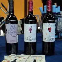 Patudo canario y el vino de Tenerife DO