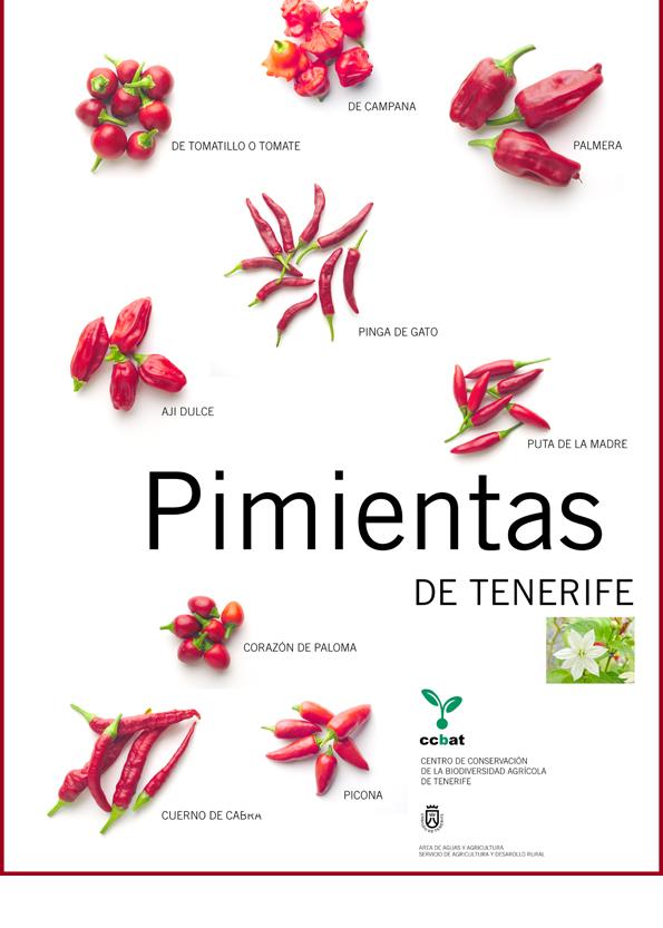 Pimientas y pimientos canarios en Mercadillo de Tegueste