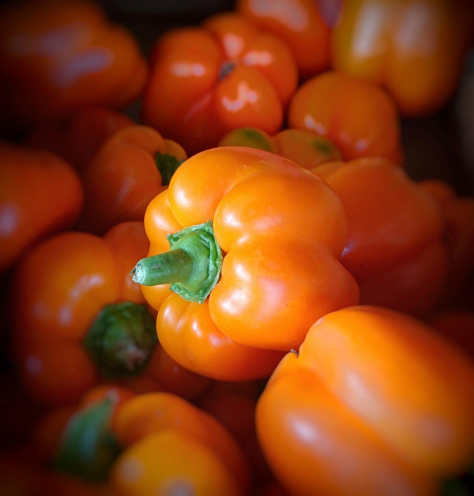 Pimientas y pimientos canarios en Mercado del Agricultor de Tegueste