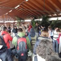 Educación y Mercado del Agricultor de Tegueste