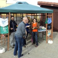 Solidaridad en Mercadillo de Tegueste