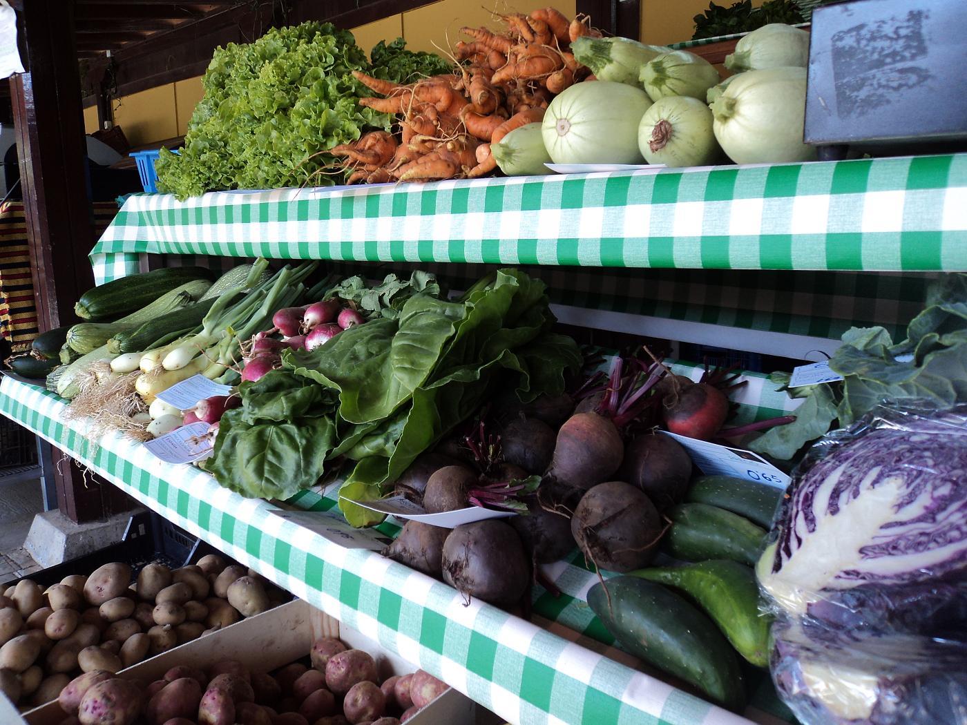 Precio de los alimentos en el Mercado del Agricultor de Tegueste